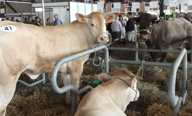 Salon Agriculture Bordeaux